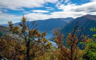 Nacionalni park Drina - Nacionalni park Drina