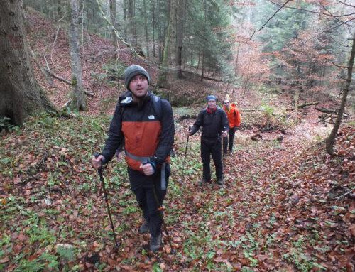 Puštena u upotrebu planinarska staza Bijele Vode – Stublić – Šarena bukva